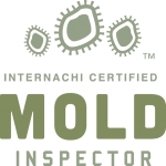 Mold Inspection San Antonio