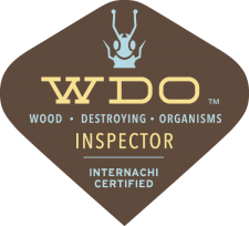 San Antonio Termite Inspection